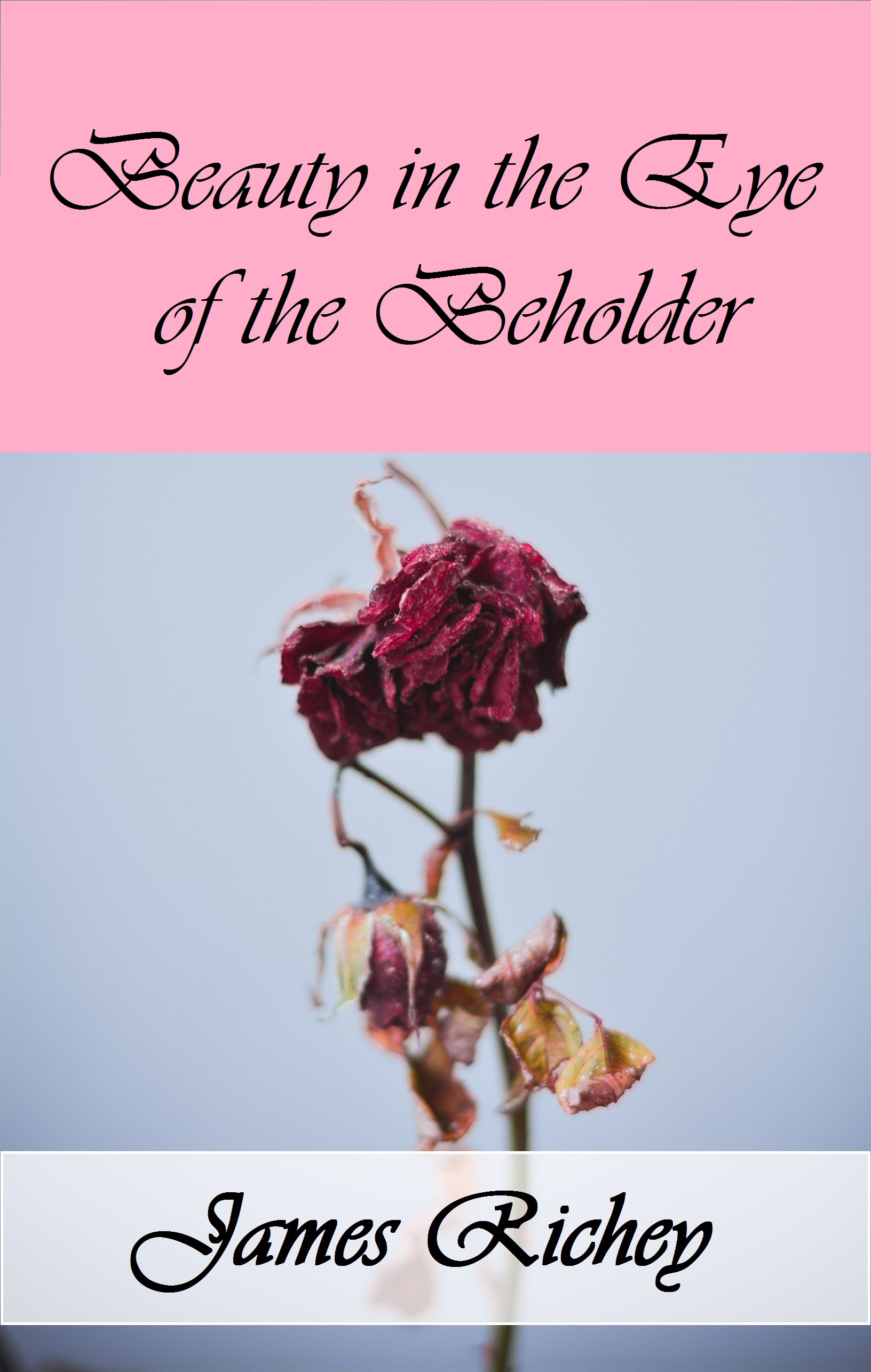 Beauty in the Eye of the Beholder (A Novelette)